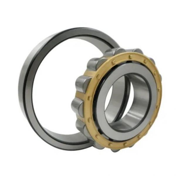 60 mm x 130 mm x 31 mm  NSK NUP312EM cylindrical roller bearings #2 image